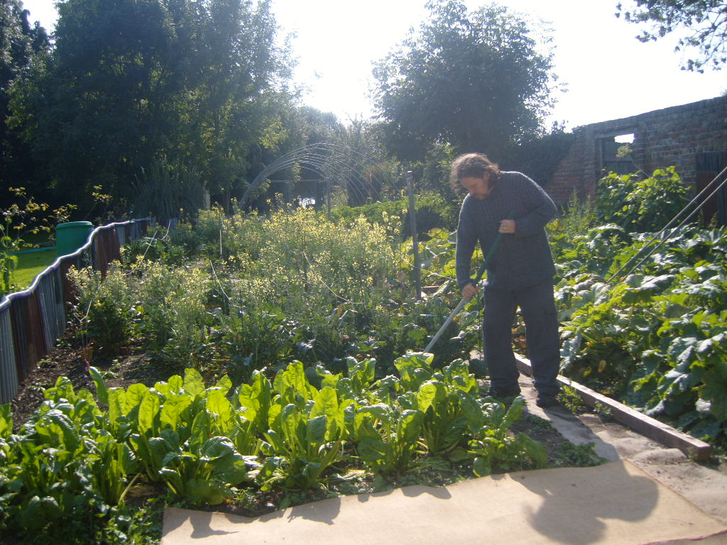 Catholic Worker Farm veg garden